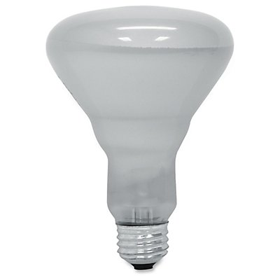 GE BR30 65W Incandescent Refl. Floodlight - 65 W - 120 V AC - BR30 Size - Soft White Light Color - Reflector - 6 / Carton